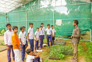 Volunteer talks to boys on basics of Organic gardening.