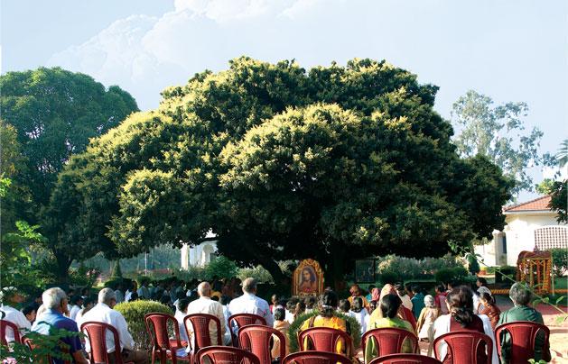 Yogoda Ranchi Litchi Vedi Meditating